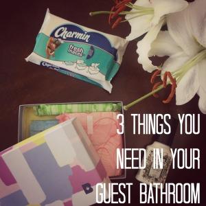 3 things guest bathroom